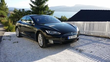 Vår Tesla i hagen